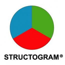 structogram test
